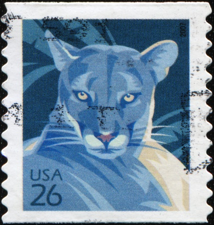 UNITED STATES OF AMERICA - CIRCA 2007: A stamp printed in the USA shows Florida Panther representative of cougar (Puma concolor), circa 2007 photo