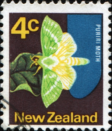 NEW ZEALAND - CIRCA 1970: A stamp printed in New Zealand shows Puriri moth butterfly, circa 1970 photo