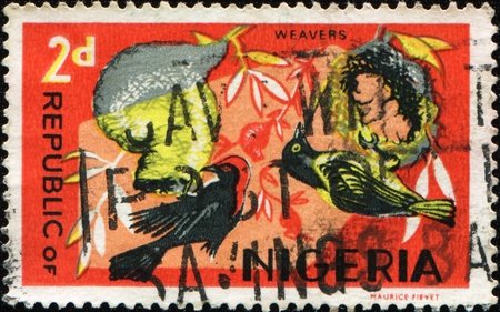postmail: NIGERIA - CIRCA 1966: A stamp printed in Nigeria shows Red-headed Malimbe  - Malimbus rubricollis, series, circa 1966