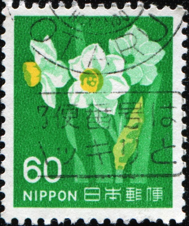 JAPAN - CIRCA 1980: A stamp printed in Japan shows narcissus, circa 1980 Stock Photo - 8964160
