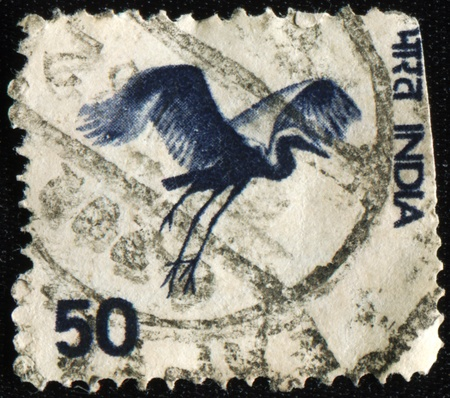 postmail: INDIA - CIRCA 1975: A satmp printed in India shows Demoiselle Crane - Grus virgo, circa 1975