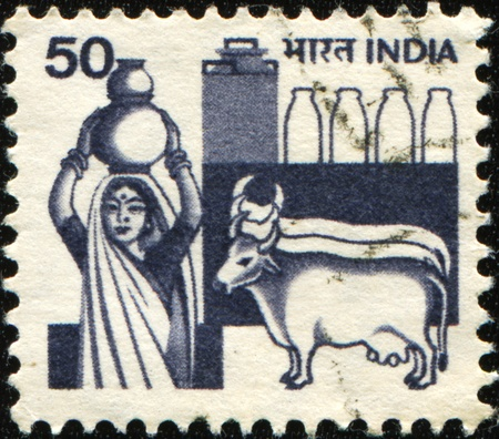 INDIA - CIRCA 1965: A stamp printed by India shows Woman with a jug of milk and two cows, circa 1965  photo