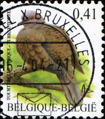 BELGIUM - CIRCA 2002: A stamp printed in Belgium shows Common Reed Bunting - Emberiza schoeniclus, circa 2002 Stock Photo - 9137114