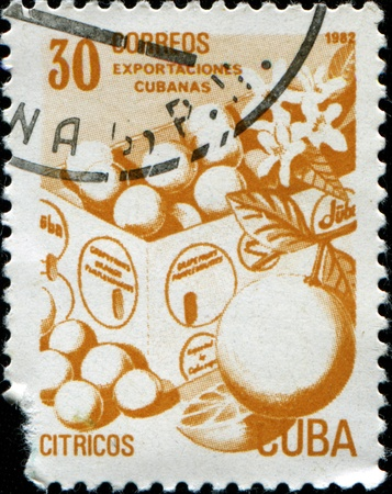 collectible: CUBA - CIRCA 1982: A stamp printed in Cuba honored Traditional Cuban exports shows citrus, circa 1982