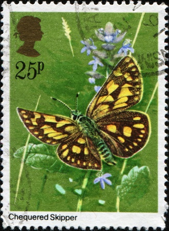 GREAT BRITAIN - CIRCA 1981: A stamp printed in Great Britain shows Chequered Skipper - Carterocephalus palaemon, circa 1981 Stock Photo - 9314925