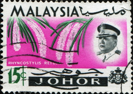 MALAYSIA - CIRCA 1965: A stamp printed in Johore state of Malaysia shows Inset portrait of Sultan Ismail and Rhynchostylis retusa (also called Foxtail Orchid), circa 1965  photo