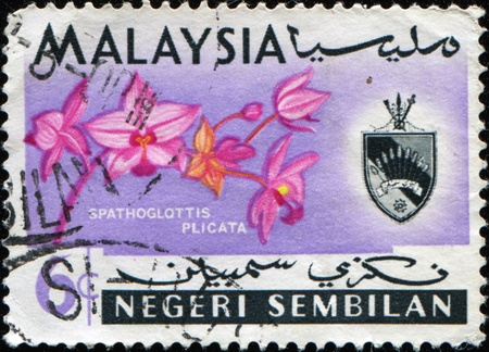MALAYSIA - CIRCA 1965: A stamp printed in Negeri Sembilan state of Malaysia shows Vanda hookeriana is a species of orchid and coat of arms, circa 1965 photo