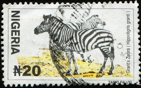 sello postal: NIGERIA - alrededor de 2001: Un sello impreso en Nigeria muestra im�genes de una cebra (Hippotigris granti), serie, alrededor del a�o 2001 Foto de archivo