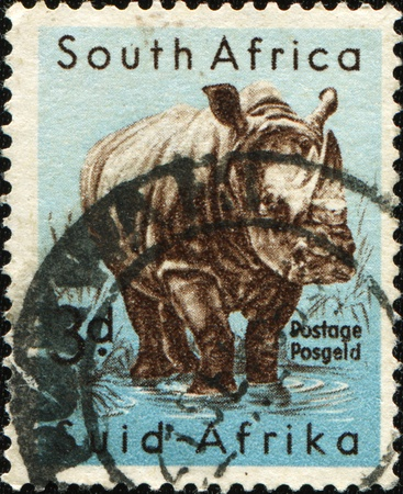 suid: SOUTH AFRICA - CIRCA 1954: A stamp printed in South Africa shows White Rhinoceros or Square-lipped rhinoceros (Ceratotherium simum), series, circa 1954 Stock Photo