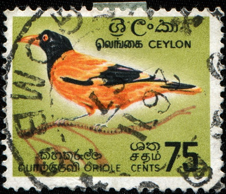 CEYLON - CIRCA 1966: A stamp printed in Ceylon shows Black-hooded Oriole - Oriolus xanthornus, circa 1966 photo
