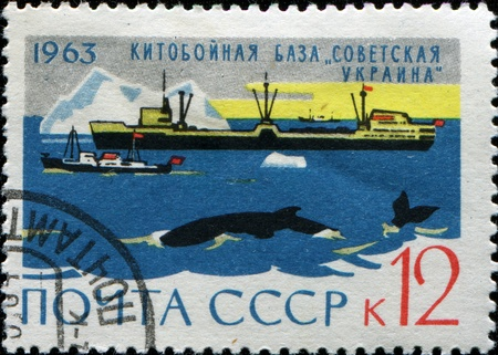whaling: USSRR - CIRCA 1963: A stamp printed in the USSR shows Whaling base