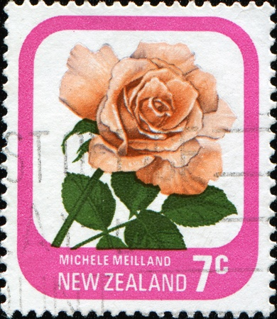 NEW ZEALAND - CIRCA 1975: A stamp printed in New Zealand shows rose Michele Meilland, series, circa 1975