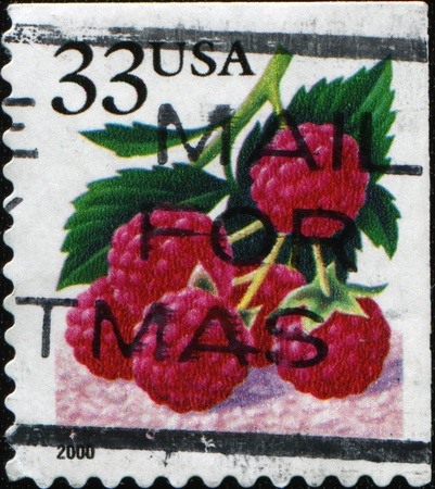 philatelic: UNITED STATES OF AMERICA - CIRCA 2000: A stamp printed in the USA shows Raspberries, circa 2000 Stock Photo