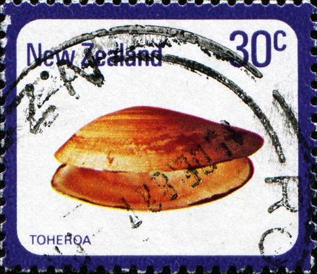 collectible: NEW ZEALAND - CIRCA 1975: A stamp printed in New Zealand shows Toheroa  - Amphidesma ventricosum, circa 1975