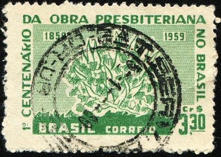 burning bush: BRAZIL - CIRCA 1959: A stamp printed in Brazil honoring Centenary of Presbyterian Work in Brazil, shows Burning Bush, circa 1959