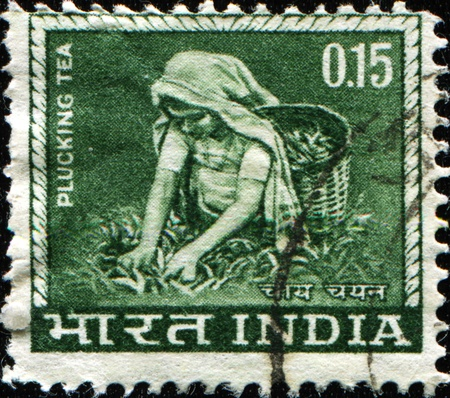 overprint: INDIA - CIRCA 1965: A stamp printed in India shows woman plucking tea, circa 1965