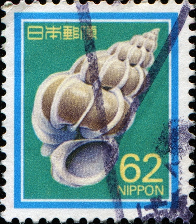 JAPAN - CIRCA 1989: A stamp printed in Japan shows precious wentletrap - Epitonium scalare, circa 1989  Stock Photo - 11370189