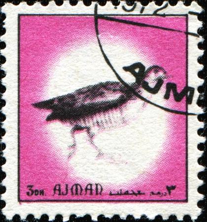 AJMAN - CIRCA 1971: A stamp printed in Ajman shows Common Pheasant - Phasianus colchicus, circa 1971 Stock Photo - 11370278