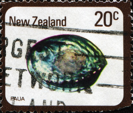 NEW ZEALAND - CIRCA 1975: A stamp printed in New Zealand shows paua stone, circa 1975 photo