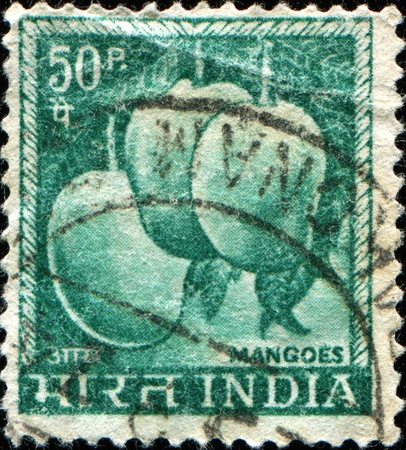 indian postal stamp: INDIA - CIRCA 1923: A stamp printed in India shows image of mangoes, series, circa 1923