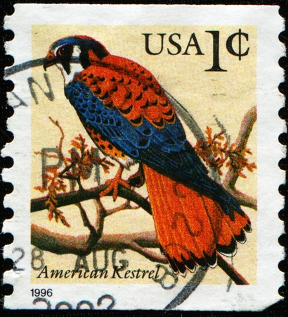 postmail: UNITED STATES OF AMERICA - CIRCA 2000: A stamp printed in the USA shows American Kestrel - Falco sparverius, circa 2000  Stock Photo