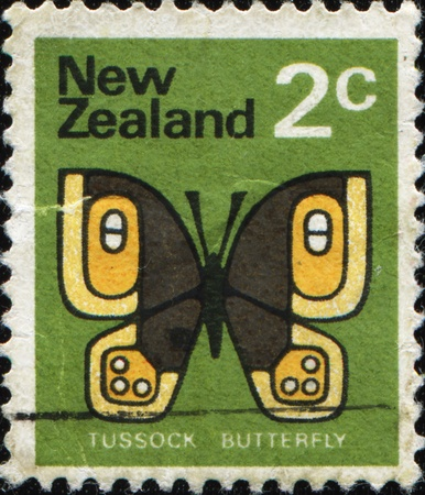 NEW ZEALAND - CIRCA 1970: A stamp printed in New Zealand shows Tussock butterfly, Rusty Tussock Moth or Vapourer, Orgyia antiqua series, circa 1970  Stock Photo - 11639612