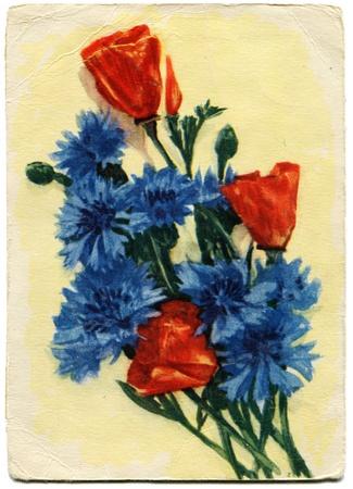 vasiliev: Cornflowers - picture artist Alexander Vasiliev, USSR, 1959