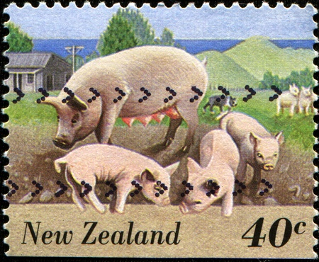 NEW ZEALAND - CIRCA 1995  A stamp printed in New Zealand shows pig with three piglets, circa 1995  photo