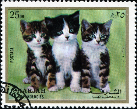 dependencies: SHARJAH AND DEPENDENCIES, UAE - CIRCA 1972: Stamps printed in Sharjah and Dependencies (United Arab Emirates) shows European kittens, circa 1972