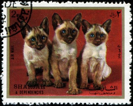 dependencies: SHARJAH AND DEPENDENCIES, UAE - CIRCA 1972: Stamps printed in Sharjah and Dependencies (United Arab Emirates) shows Siamese kittens, circa 1972