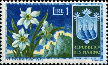 SAN MARINO - CIRCA 1953: A stamp printed in San Marinoa shows Narcissus, circa 1953 Stock Photo - 14093448