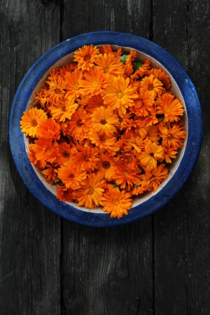 handmade antique plate with calendula bloom and petals on the wooden floor  photo