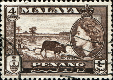 malaya: MALAYA - CIRCA 1946  A stamp printed in Peneng, Malaya shows rice field inset portrait of Queen Elizabeth II, series, circa 1946