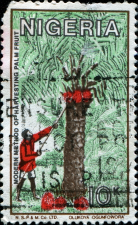NIGERIA - CIRCA 1980  A stamp printed in Nigeria dedicated to the Modern Method Of Harvest Palm Fruit, circa 1980 photo