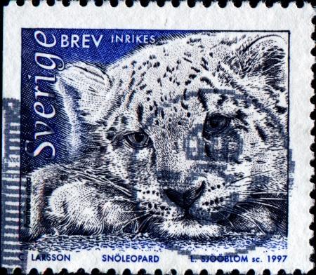 SWEDEN - CIRCA 1997  A stamp printed in Sweden shows snow leopard - Panthera uncia or Uncia uncia, circa 1997 photo