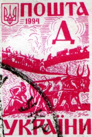 the cossacks: UCRANIA - CIRCA CIRCA 1994 Un sello impreso en Ucrania muestra cosacos arar la tierra con bueyes, alrededor de 1994