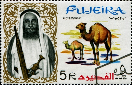crewcut: FUJERIA - CIRCA 1964  A stamp printed in Fujeria shows camels, circa 1964  Editorial