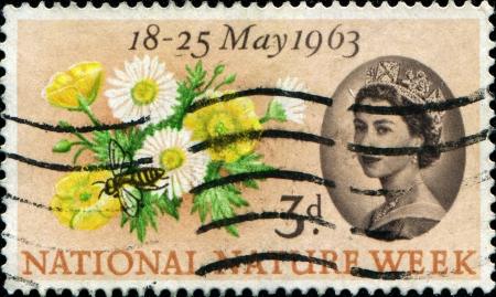 UNITED KINGDOM - CIRCA 1963  A stamp printed in England, is dedicated to National Nature Week, shows Buttercups, Daisies and Bee, circa 1963