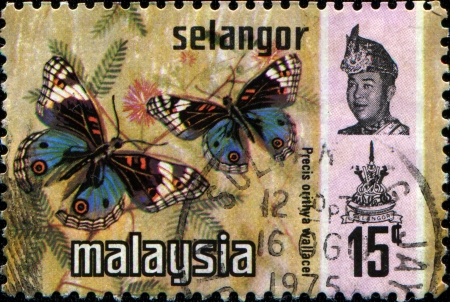 SELANGOR - CIRCA 1971  A stamp printed in Selangor  1 of the 13 states of Malaysia  shows butterfly Blue pansy - Precis orithya wallace with portrait of Sultan Salahuddin Abd Aziz Shah, circa 1971