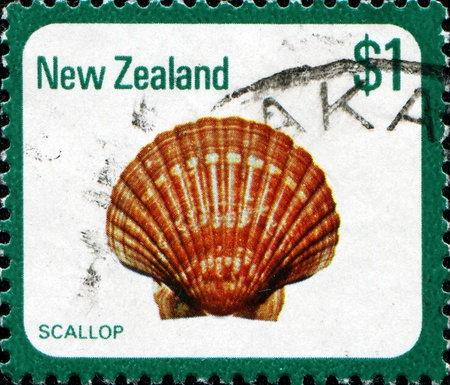 collectible: NEW ZEALAND - CIRCA 1979  A stamp printed in New Zealand shows scallop, series, circa 1979