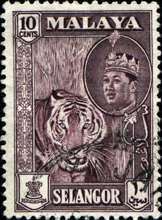 malaya: MALAYA - CIRCA 1957  A stamp from state Selangor of the Federation of Malaya shows tiger and portrait of Sultan Hisamud-din Alam Shah, circa 1957