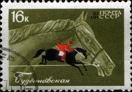 USSR - CIRCA 1968  A stamp printed in the USSR shows Budyonny horse photo