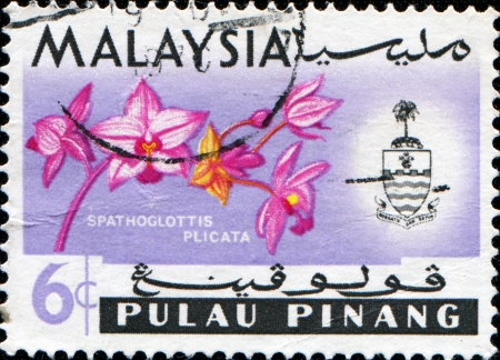 MALAYSIA - CIRCA 1965  A stamp printed in Malaysia  Pulau Pinang state  shows Large Purple Orchid  Spathoglottis plicata  , series, circa 1965 photo