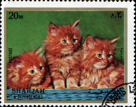 SHARJAH AND DEPENDENCIES, UAE - CIRCA 1972  Stamps printed in Sharjah and Dependencies  United Arab Emirates  shows  kittens, circa 1972