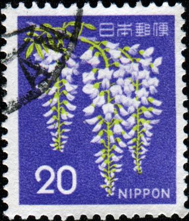 JAPAN - CIRCA 1969  A stamp printed in Japan, shows a flowering Wisteria sinensis, circa 1969  photo