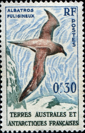 albatross: FRANCE - CIRCA 1956  A stamp primted for French Southern and Antarctic Territories shows Albatross, circa 1954 Stock Photo