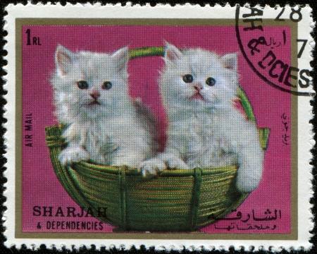 SHARJAH AND DEPENDENCIES, UAE - CIRCA 1972  Stamps printed in Sharjah and Dependencies  United Arab Emirates  shows kittens, circa 1972  写真素材