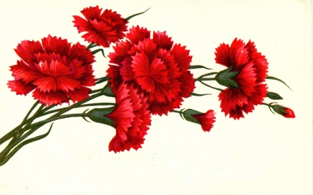 USSR  - CIRCA 1976: Postcard shows draw by Artist Grun - red carnations, circa 1976
