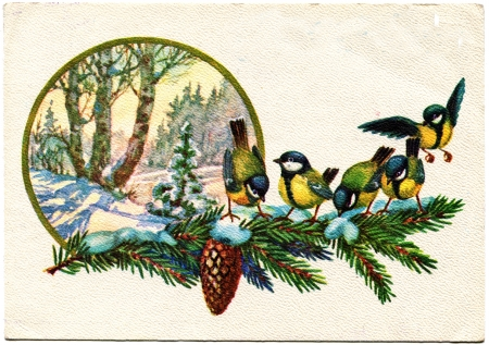 USSR - CIRCA 1978  Postcard printed in the USSR shows draw by Popov - titmouse sit on a spruce branch on the background of snow-covered forest, circa 1978