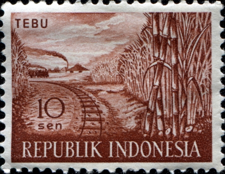 INDONESIA - CIRCA 1960  A stamp printed in Indonesia from the  Agricultural products  issue shows sugar cane, rail road and train, circa 1960